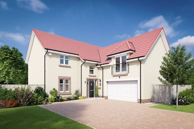 "Thumbnail Detached house for sale in ""The Melville"" at Edinburgh Road, Belhaven, Dunbar"