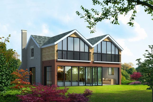Thumbnail Detached house for sale in West Hill Road, West Hill, Ottery St. Mary