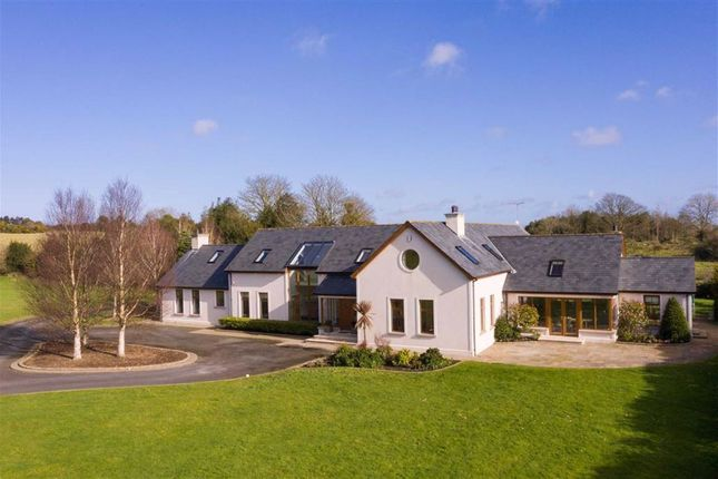 Thumbnail Detached house for sale in Drumnaconagher Road, Ballynahinch, Down
