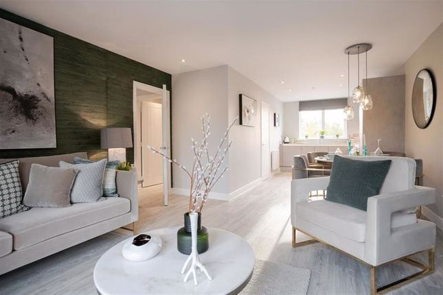 2 bed terraced house for sale in Barnfield Road, St.Albans AL4
