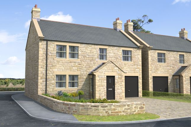 Thumbnail Detached house for sale in Skyline, Gloster Hill Farm, Amble Northumberland