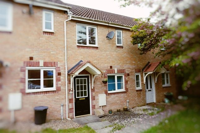 Thumbnail Terraced house to rent in Cwrt Lafant, Llansamlet, Swansea, West Glamorgan