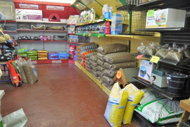 Photo 2 of Pets, Supplies & Services BD12, Wyke, West Yorkshire