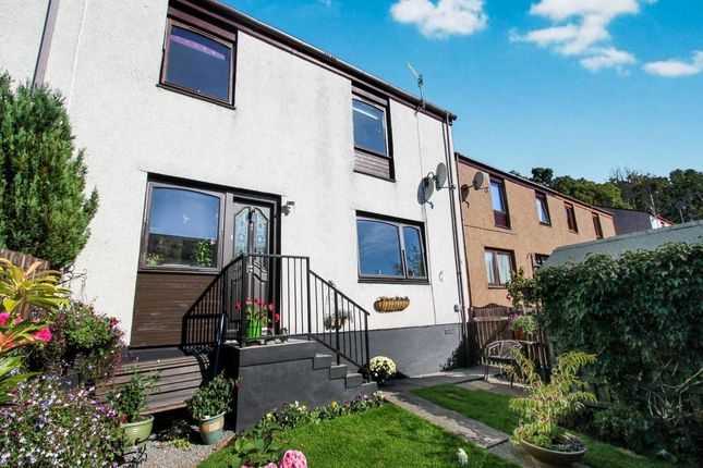 Thumbnail Terraced house to rent in Chestnut Road, Dingwall