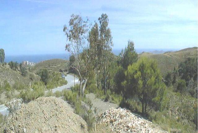 View From Plot of Spain, Málaga, Mijas
