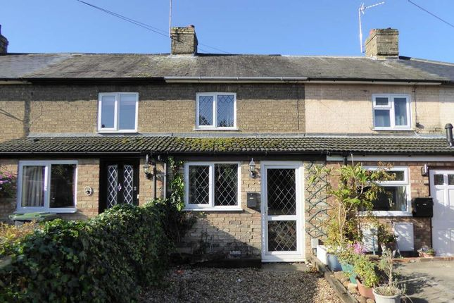 Thumbnail Terraced house to rent in Palace Street, Biggleswade