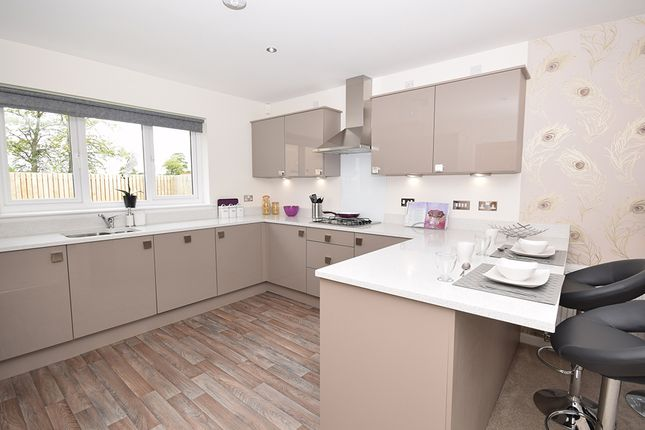 4 bedroom detached house for sale in Alloa Park Drive Off Clackmannan Road, Alloa, Clackmannanshire