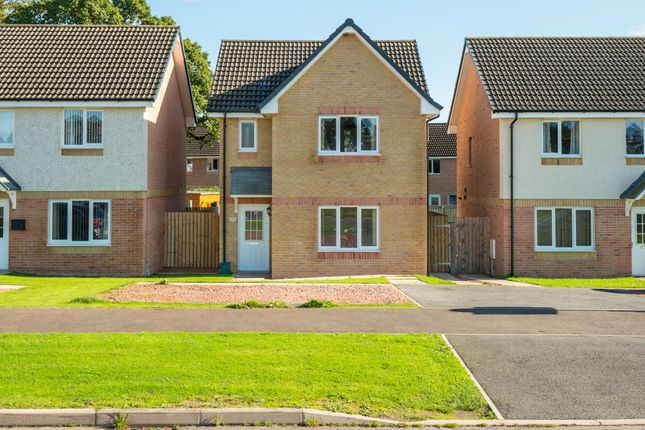 Thumbnail Detached house for sale in Summerpark Road, Dumfries