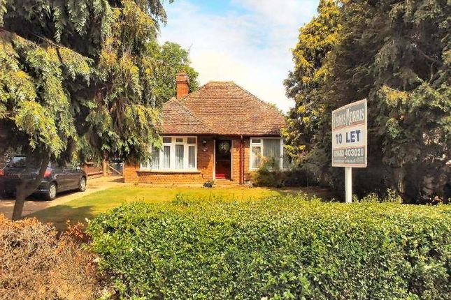 Thumbnail Detached bungalow to rent in Bushmead Road, Eaton Socon, St. Neots