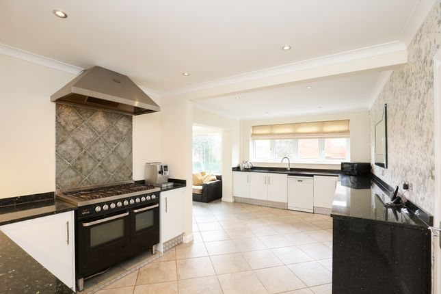 Thumbnail Detached house for sale in Holkham Rise, Sheffield