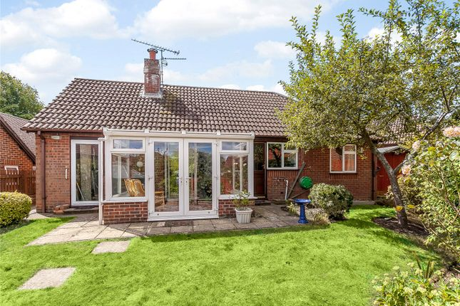 Thumbnail Bungalow for sale in Salisbury Close, Odiham, Hook, Hampshire