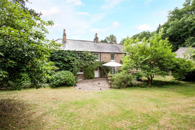 Thumbnail Semi-detached house for sale in Rose Hill, Burnham, Buckinghamshire