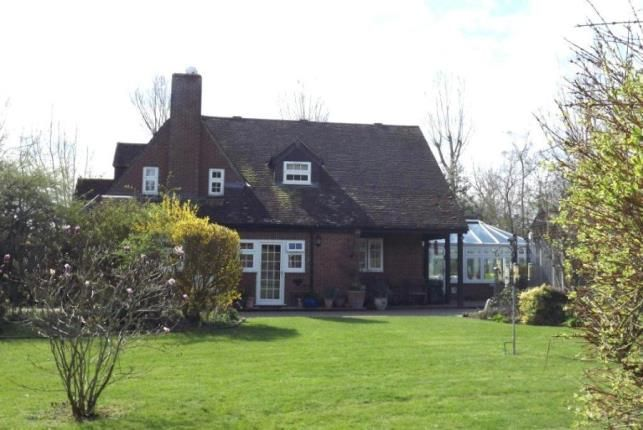 Thumbnail Detached house for sale in Rookery Road, Wyboston, Bedford, Bedfordshire