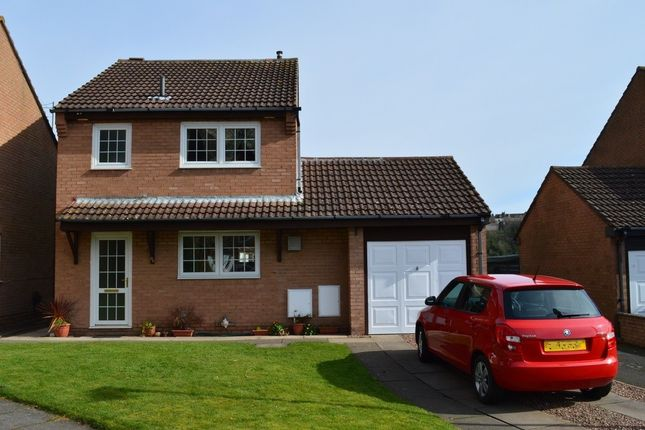 Thumbnail Detached house for sale in Riverdene, Tweedmouth, Berwick Upontweed, Northumberland