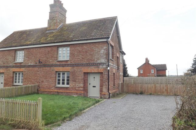 Thumbnail Semi-detached house to rent in Hillcommon, Taunton