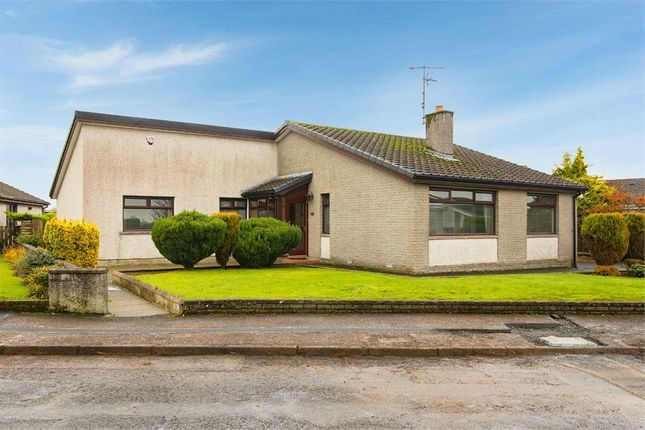 Thumbnail Detached bungalow for sale in Collinwood, Ballymena, County Antrim