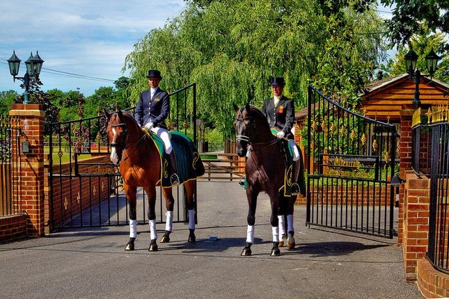 Thumbnail Equestrian property for sale in Tandridge Lane, Lingfield