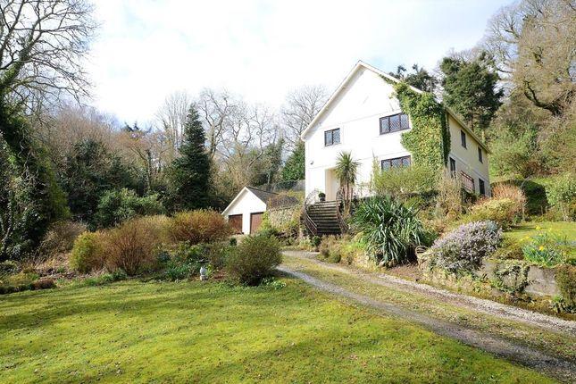 Thumbnail Detached house for sale in Lustleigh, Devon