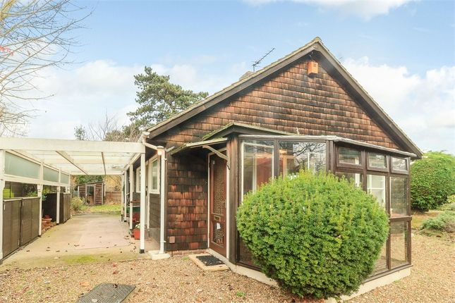 Thumbnail Detached house for sale in St Catherines Road, Broxbourne, Hertfordshire