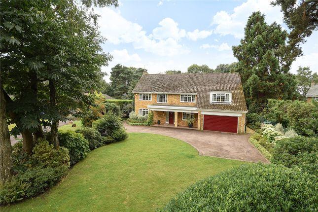Detached house for sale in Azalea Way, Camberley, Surrey
