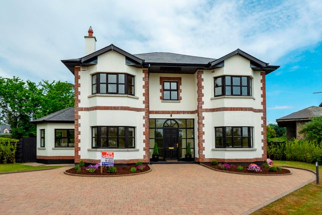 Thumbnail Detached house for sale in 9 Beach Walk, Seafield, Ballymoney, Wexford County, Leinster, Ireland