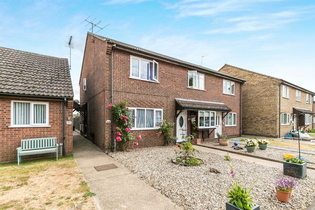 Thumbnail Semi-detached house for sale in Montbretia Close, Stanway, Colchester