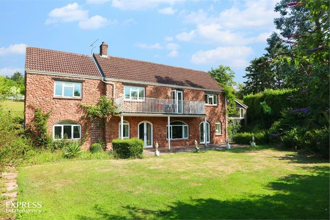 Thumbnail Detached house for sale in Preston Bowyer, Milverton, Taunton, Somerset