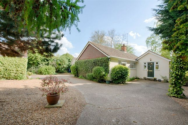 Thumbnail Detached bungalow for sale in Thrapston Road, Brampton, Huntingdon