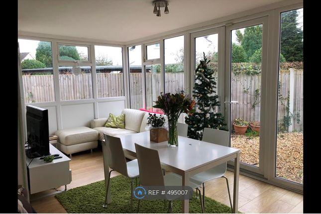 Thumbnail Bungalow to rent in De Hague Rd, Norwich