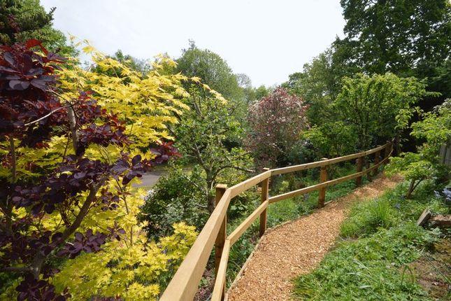 Photo 11 of Southlands Park, Midhurst GU29
