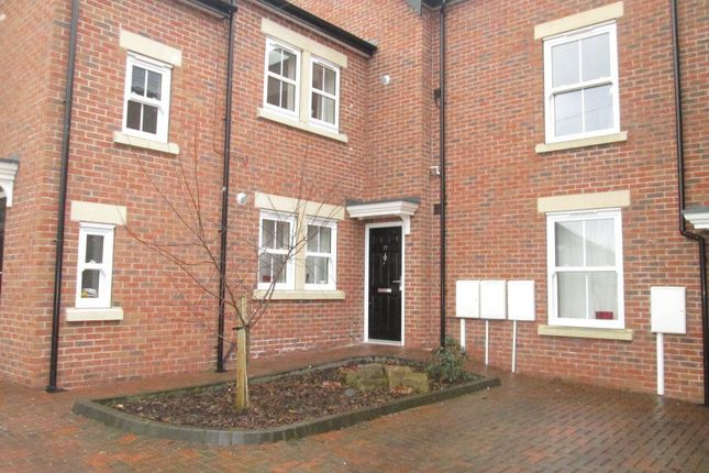 Thumbnail Property to rent in Selwyn Street, Derby