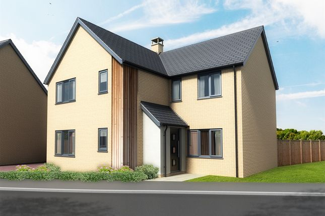 Thumbnail Detached house for sale in Pound Cottages, Bloomsbury Close, Oulton, Lowestoft