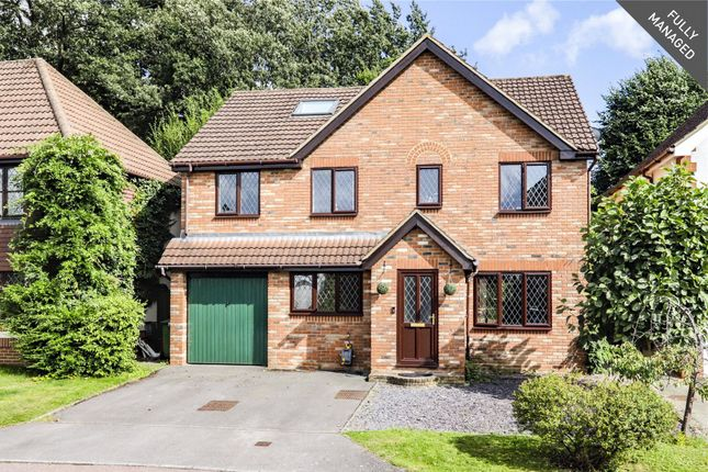 Thumbnail Detached house to rent in Norfolk Chase, Warfield, Bracknell, Berkshire