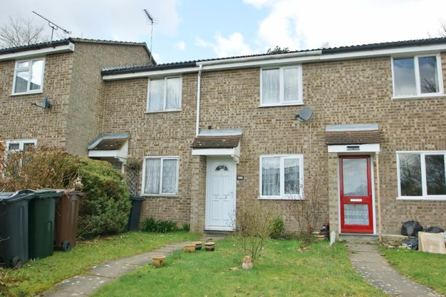 Thumbnail Terraced house to rent in Copperwood, Ashford