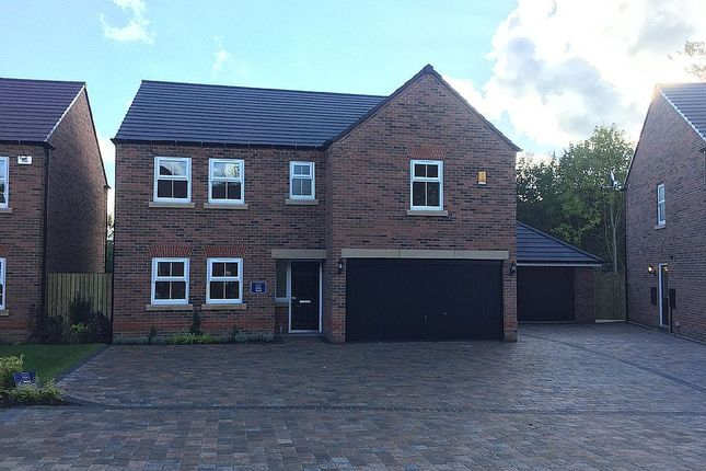 Thumbnail Detached house for sale in Thorpe Park Gardens, Leeds, West Yorkshire