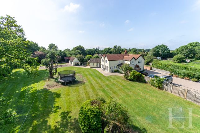 Thumbnail Detached house for sale in Ravens Green, Little Bentley, Colchester