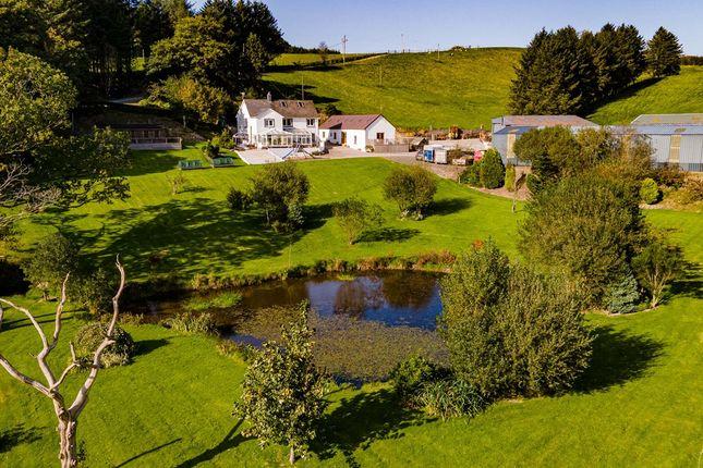 Thumbnail Farm for sale in Cwmann, Lampeter