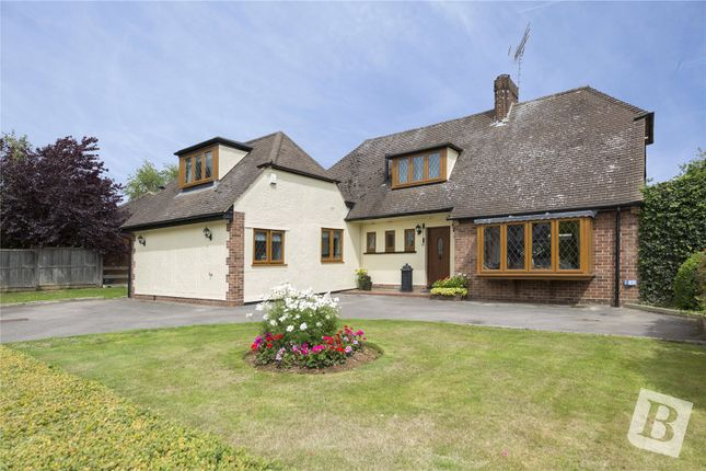 Thumbnail Detached house for sale in Roxwell Avenue, Chelmsford, Essex