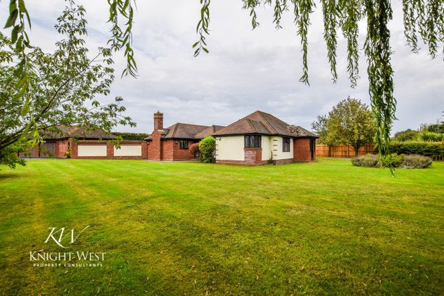 Thumbnail Detached bungalow for sale in Great Tey Road, Colchester, Essex