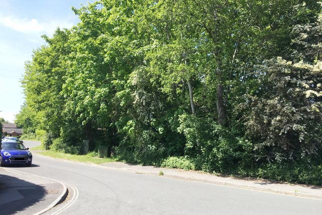 Thumbnail Land for sale in Land Greenwood Close, Ashley Gardens Estate, Romsey, Hampshire