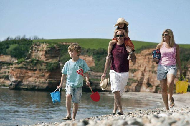 Photo 2 of Ladram Bay, Otterton, Budleigh Salterton EX9
