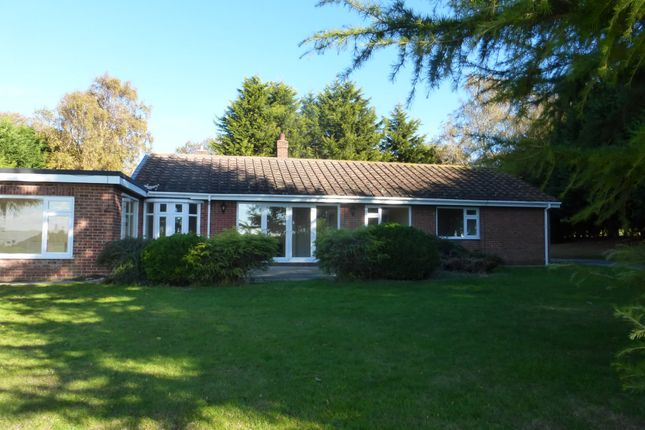 Thumbnail 4 bed detached bungalow to rent in East Ravendale, Grimsby