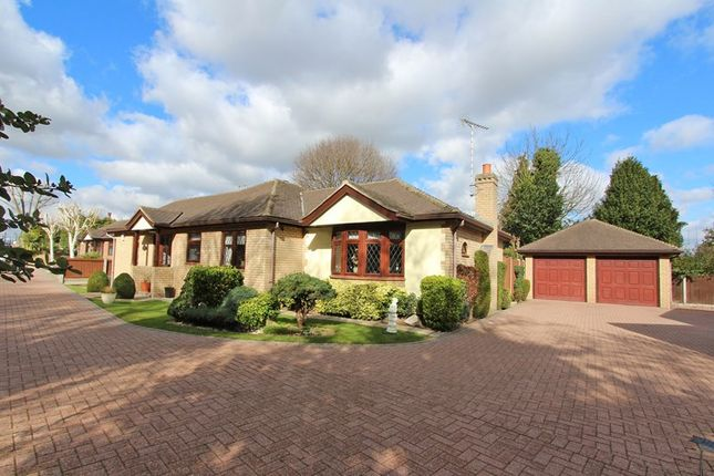 Thumbnail Bungalow for sale in Broad Walk, Hockley