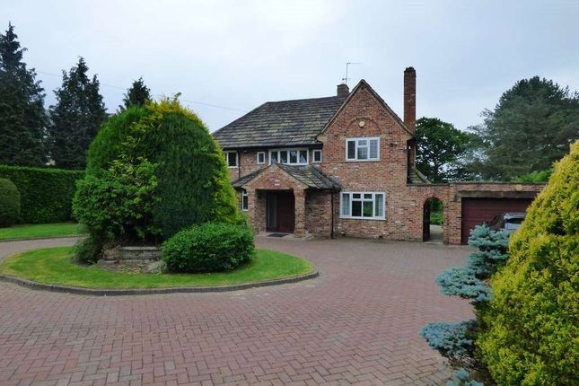 Thumbnail Detached house to rent in Eaglehurst, 20 Heybridge La