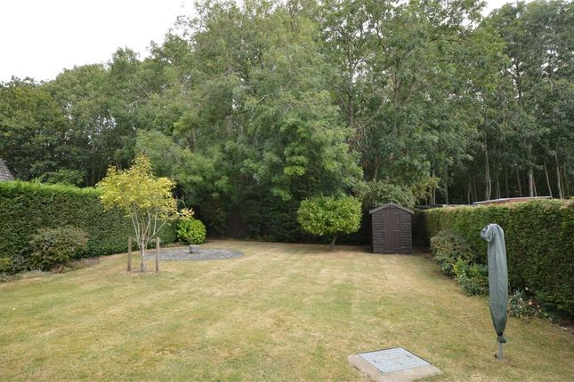 3 bed detached house for sale in Orchard Way, Tasburgh