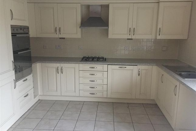 Thumbnail Town house to rent in Arequipa Reef, Eastbourne