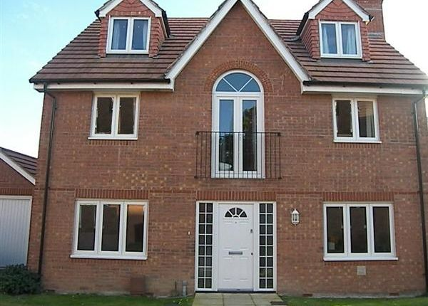 Thumbnail Detached house for sale in Palmers Field Avenue, Chichester