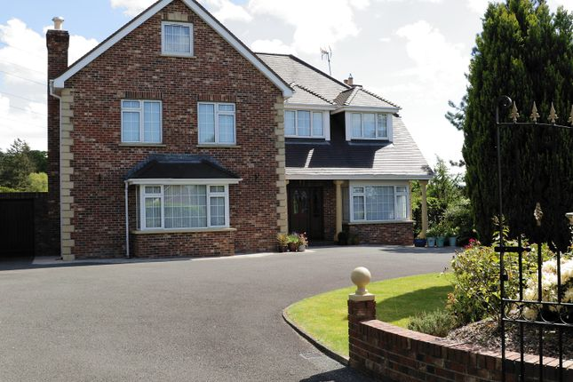 Thumbnail Detached house for sale in 54 Hollywood Grove, Newry