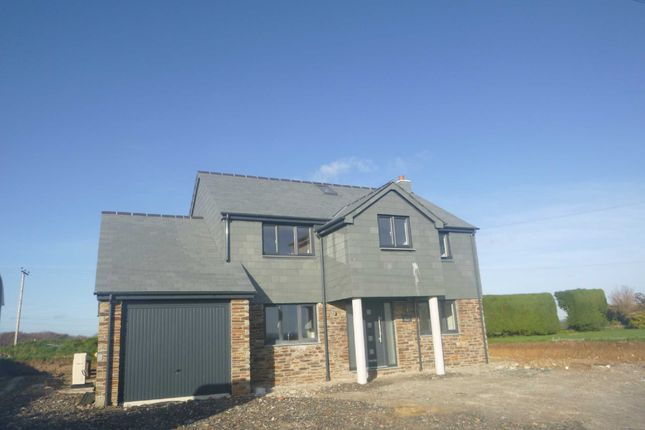 Thumbnail Detached house to rent in Whitstone, Holsworthy