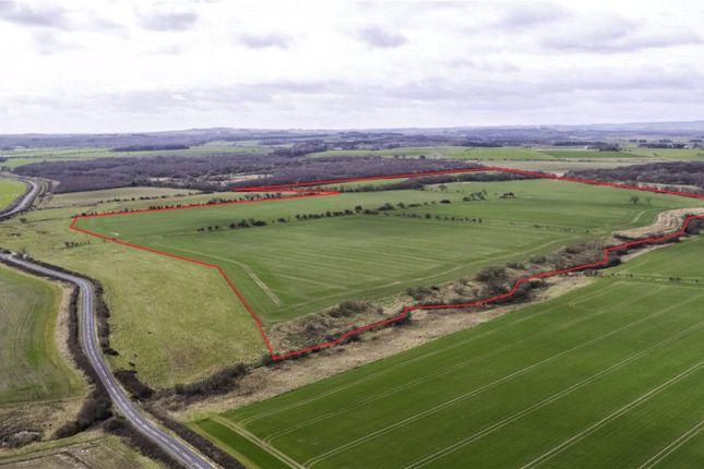 Thumbnail Land for sale in Widdrington, Morpeth